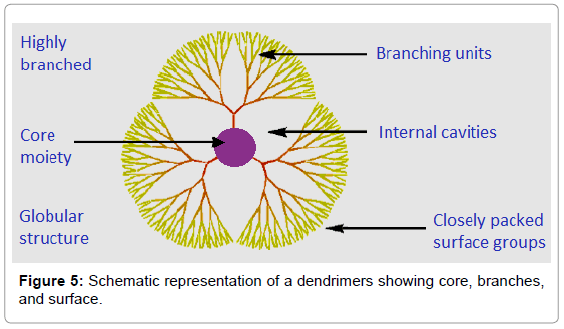 View of RECENT PROGRESS OF DENDRIMERS IN DRUG DELIVERY FOR CANCER