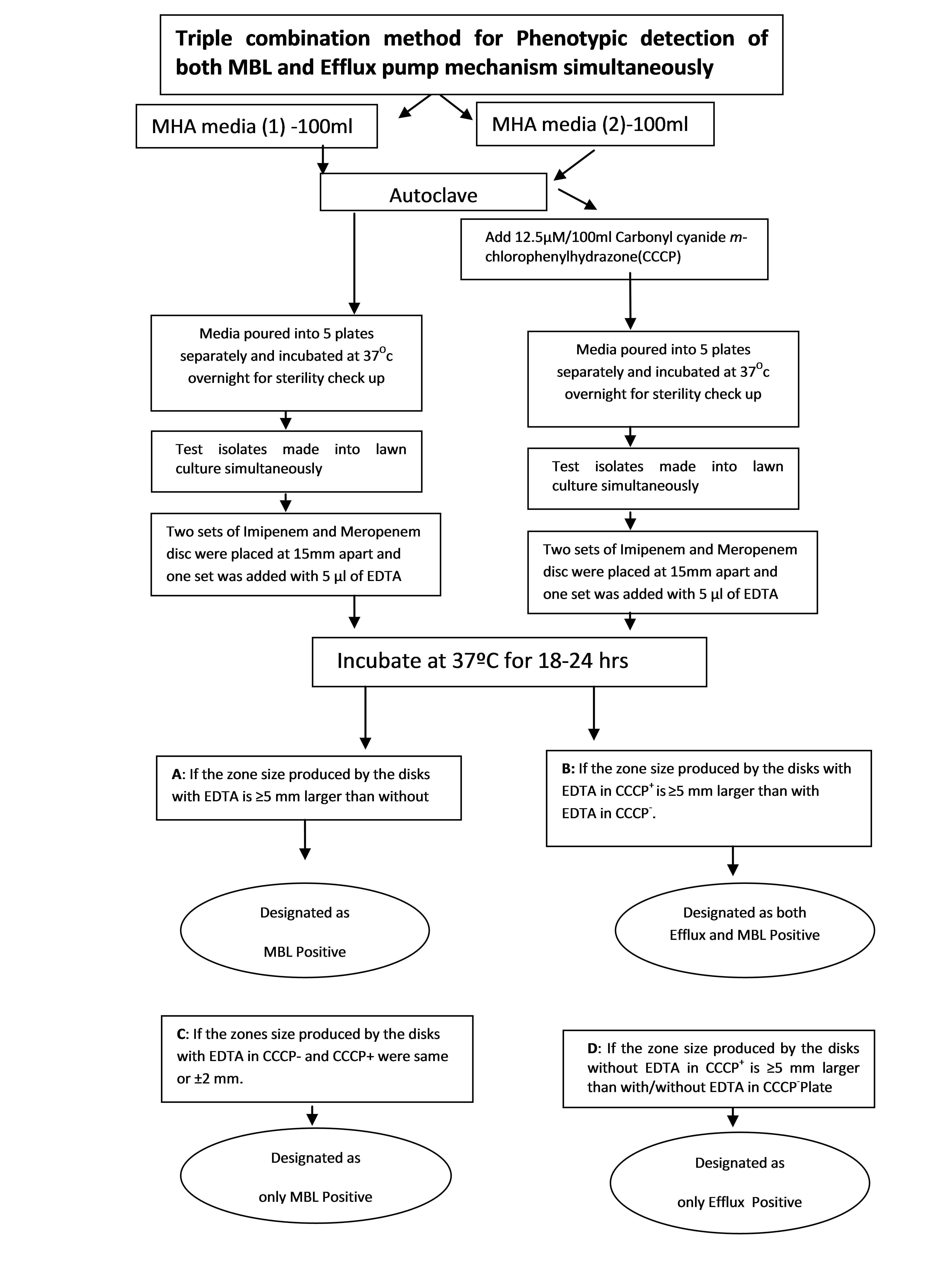 N 1 protocol and interpretation guidelines in flow chart format for detection and differentiation of both mbl and efflux pump mechanism simultaneously using nvjuhfo Choice Image