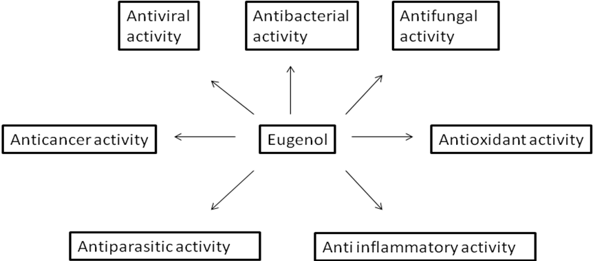 View of VERSATILE AND SYNERGISTIC POTENTIAL OF EUGENOL